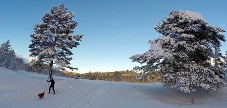 Rauland skisenter langrenn tur guide