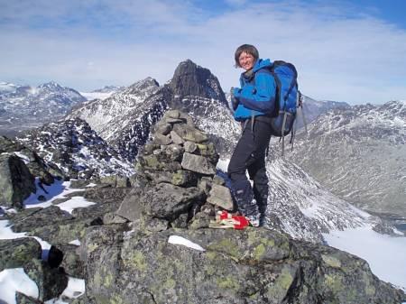Nordre Svartdalspiggen utsikt Jotunheimen