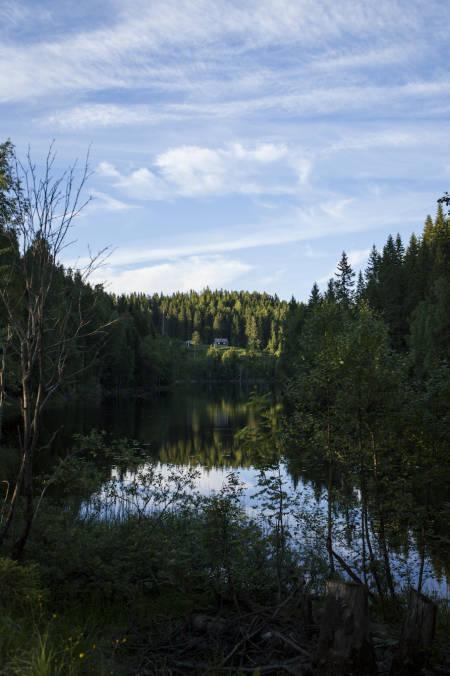 På veien mellom Gørja og Middagskollen. Foto: Marte Stensland Jørgensen
