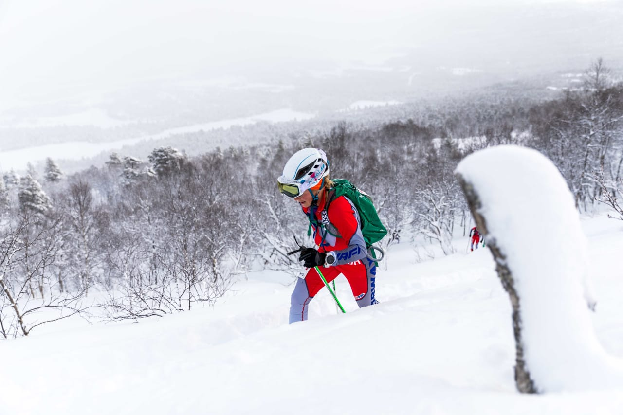 Foto: Håkon Lundkvist