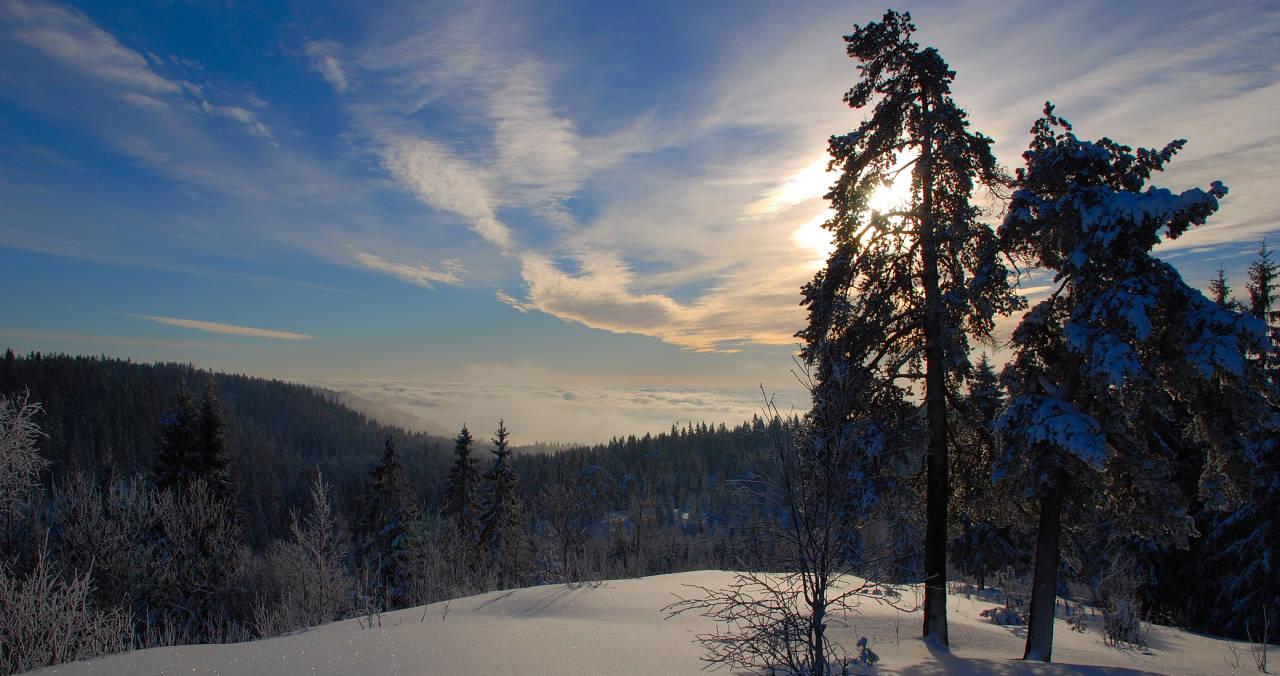 Oslomarka byr på kortreist skiglede for oss Oslofolk. Gleden med å være på tur, når sitt klimaks når marka bader i sol mens Oslo sentrum (i bakgrunnen) er pakket inn i tåke.