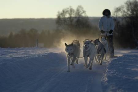 BÆREKRAFTIG REISEMÅL: Røros er blant stedene som har fått Merket for bærekraftig reisemål siden lanseringen i mars 2013. Foto: Terje Rakke/Nordic Life visitnorway.com