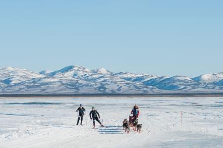 På vei inn til Unalakleet får Sigrid Ekran følge av to langrennsløpere, et sjeldent syn rundt Alaskas landsbyer. Foto: Kristine Nyborg
