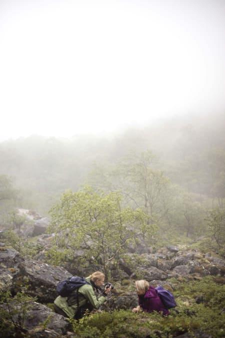 Fotokurs med Matti Bernitz. Foto: Matti Bernitz