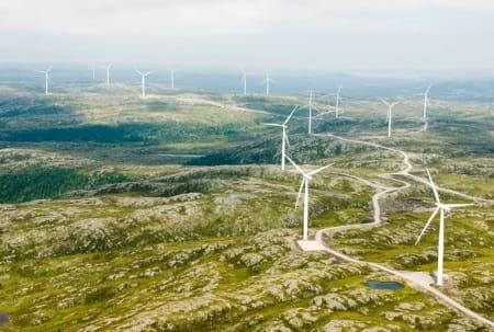 Frøya vindpark består av vindturbiner i til nå urørt natur. Vindkraft bidrar bare neglisjerbart i klimasammenheng, men ødelegger uerstattelig natur og dreper store mengder fugler. Foto: Hitra-frøya.no