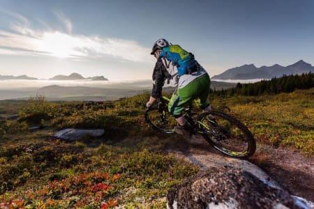 Syklistene får skylda for stislitasje