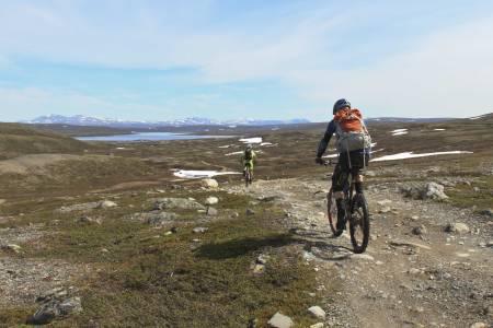 Terrengsykling på Finnmarksvidda. Foto: Jon Vidar Bull