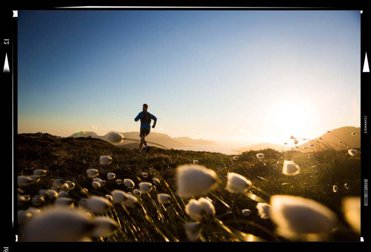 FOTOKONKURRANSE: I naturlige omgivelser ligger mye til rette for at å klare å fange fine motiver. Foto: Håvard Myklebust