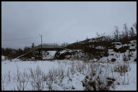 Ved skiløypa, nedenfor Rødtind.