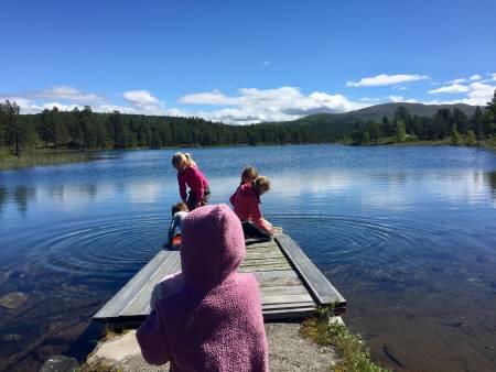 BOKBAD: Ingen grunn til fortvilelse selv om sommerferien din ikke tilbringes ved et fjellvann, som her ved Lemonsjøen i Vågå.  UTEs bokanmelder anbefaler fem fjellklassikere og én nykommer som strandlektyre og mental opptur i sommer. Foto: Sigurd Rønningen
