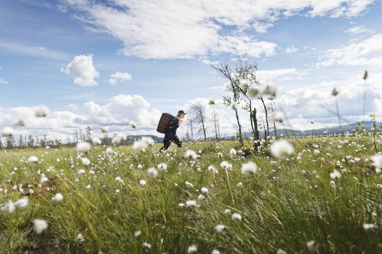 EKSPEDISJON: Vannveien tok oss fra Rogen naturreservat gjennom norsk og svensk natur hele veien ned til Göteborg. Foto: Anna Ölund