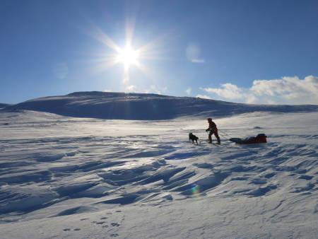 80 MIL MED SKI OG PULK Inger og Minik tråkker seg over et vindblåst parti i Indre Troms. Foto: Therese Kongsli Jakobsen.