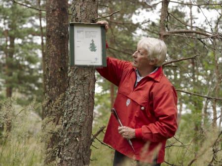 ILDSJEL: Alle postene utvikles av Kåre Haug - han er en frivillig som er ekstremt kunnskapsrik på Markahistorie, han tråler Marka på kryss og tvers på jakt etter nye spennende turmål for oss andre. Foto: Håkon Harris