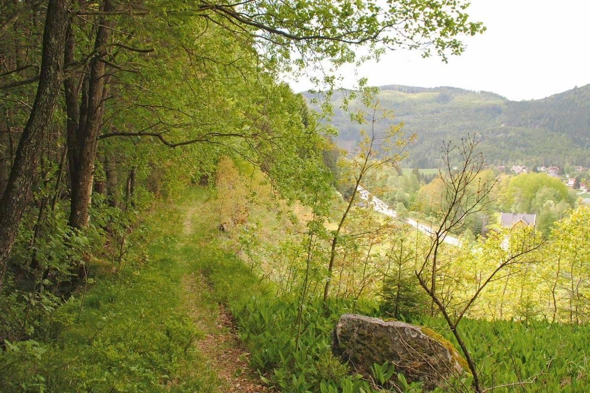 Fint å vandre langs Konsmokleivene. Foto: Trond Bendixen/Barnevandrerstien