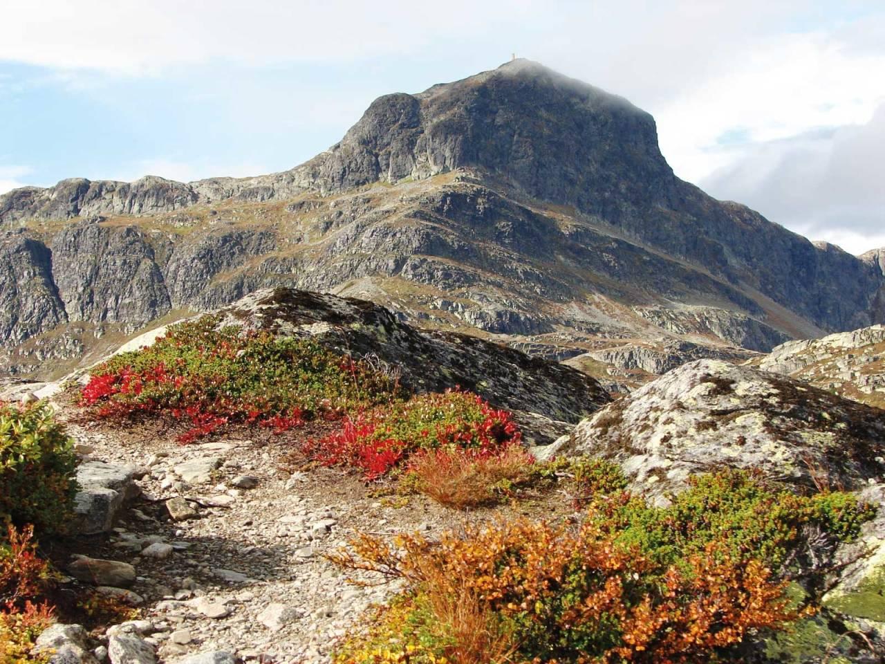 fjelltur til bitihorn