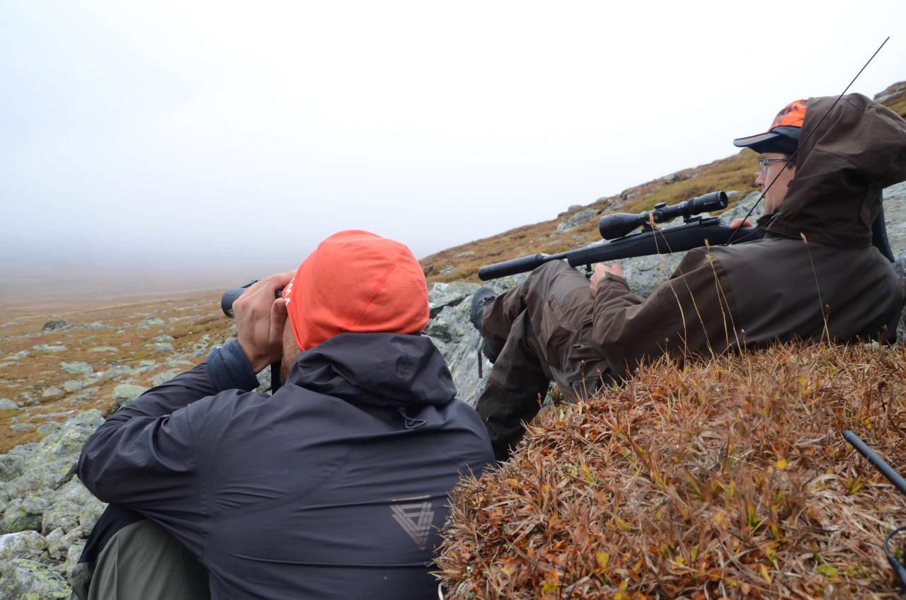 jegere speider etter reinsdyr nordfjella skrantesjuke