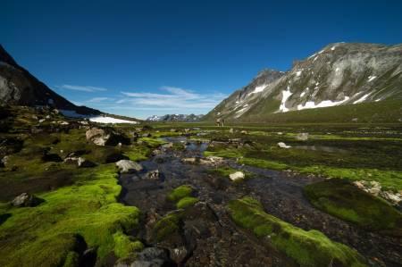 EVIGGRØN: Sykkylvsdalen har eit karrig landskap. Kven skulle tru at denne dalen løyner ei grøn elveslette? Foto: Ståle Johan Aklestad