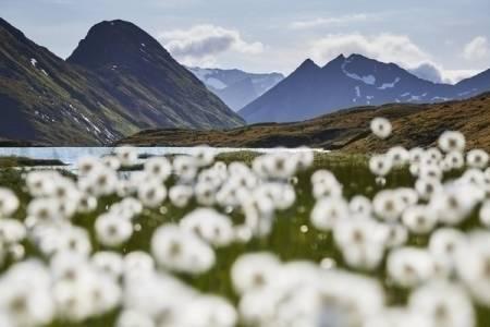 NÆRAST HJARTET: I mange år har eg hatt tankar om å gå tur rundt Hjørundfjorden. For meg handla om å kunne gå ei fleire dagars samanhengande vandring rundt fjorden i det fjellområdet som ligg nærast hjartet mitt. Foto: Gunnar Wangen
