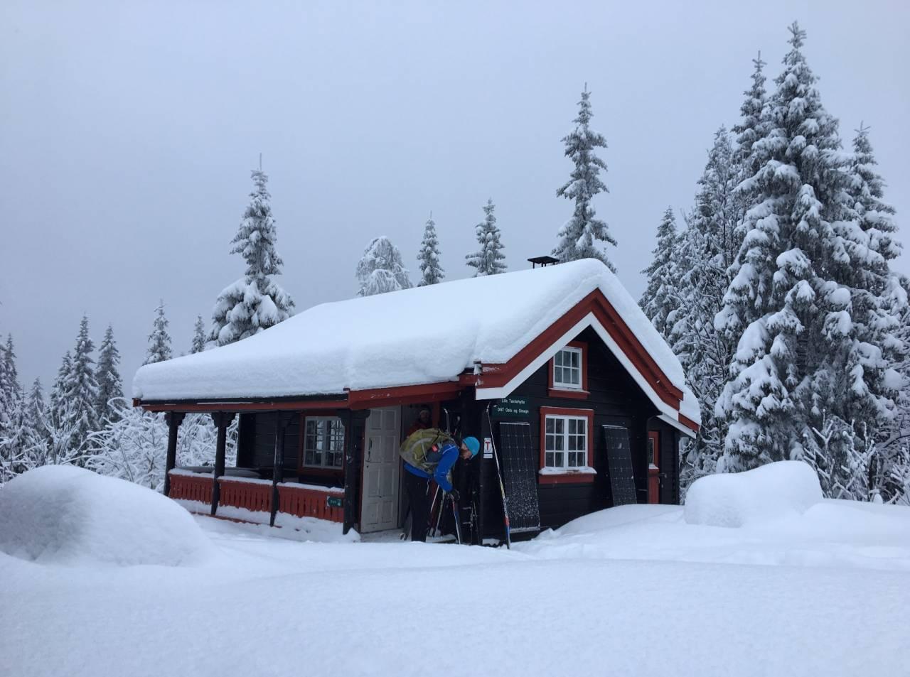 LILLE TØMTEHYTTA: Å våkne opp i slike omgivelser er en fin start på dagen. Foto: Gunhild Aaslie Soldal