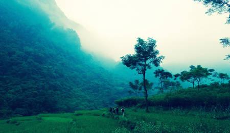 VIETNAM: Foran oss venter fire dagers frisk gange gjennom et virvar av grønt. Tre svært middels trente norske fjellgeiter er klare for eventyret i Nord-Vietnam!