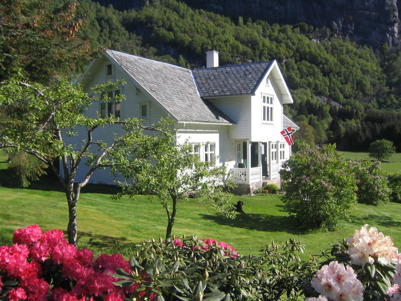 IDYLLISK: Hauane Gård ligger innerst i Lysebotn, en bygd som bare har 14 fastboende innbyggere, men som hver eneste sommer får besøk av 100.000 tilreisende turister. Foto: Kjell Josten Lyse
