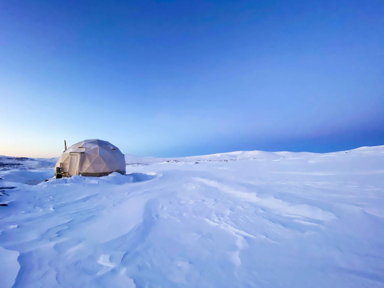 arctic dome høvringen glamping
