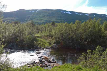 Raulandsfossen turguide Telemark