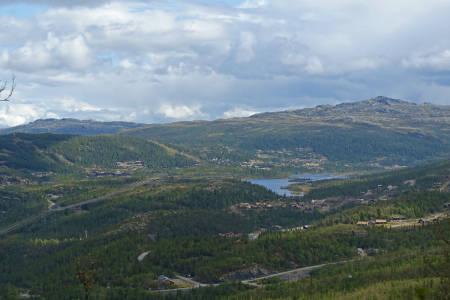Svineroe Selstali turguide Rauland Telemark