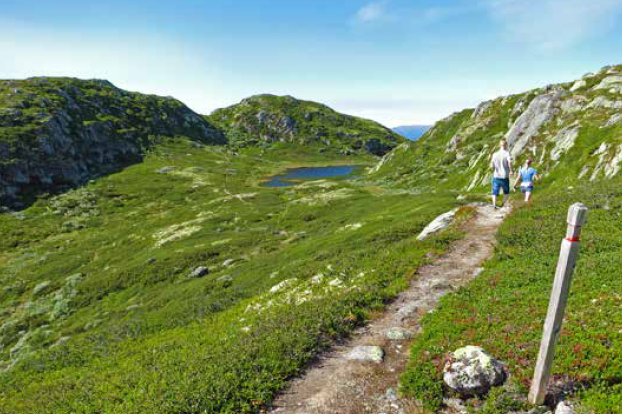 Svinefjell Silkedalsnutane sti turguide Rauland