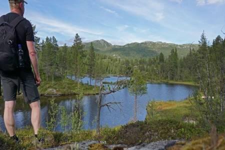 Longetjønn ligger fint til inne i skogen. I bakgrunnen ser vi fjellene ved Holtardalen, blant annet Brattskarnuten. (Foto: Erlend Larsen)