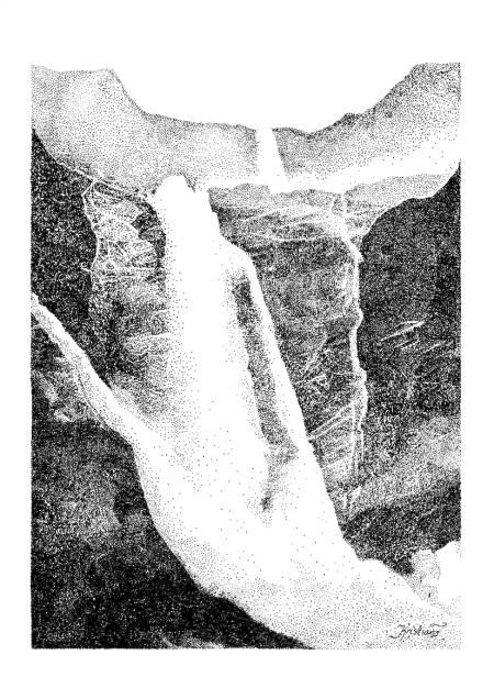 MARDØLA: Det var særlig Mardøla-aksjonen i 1970 med det naturvennlig tankemønsteret som ble gjort kjent gjennom denne sivile ulydighetskampanjen som ansporet til en landsomfattende dugnad: Øko-filosofi i den norske tradisjonen, skriver Nils Faarlund. Illustrasjon: Kristian Tiller Torsvik