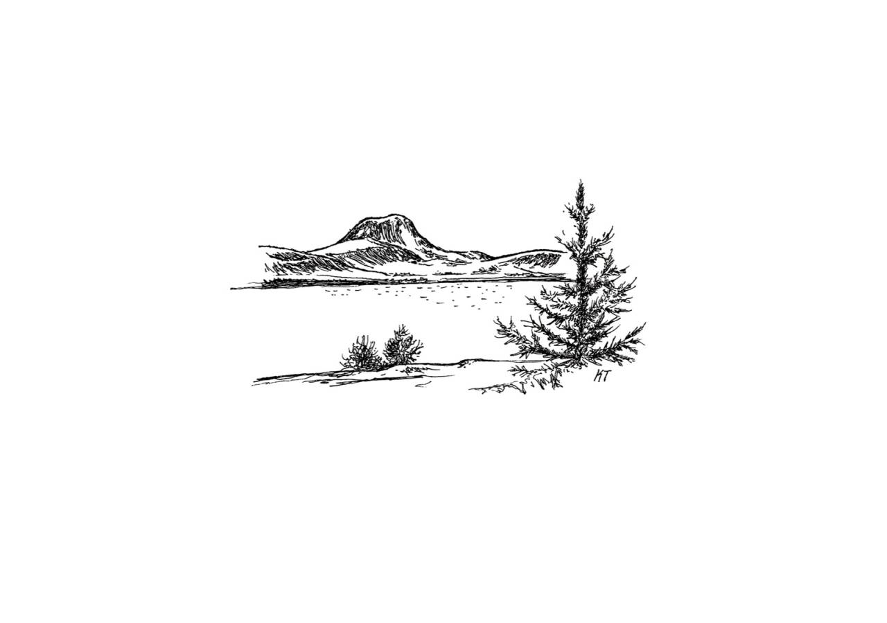 Andersnatten illustrasjon Kristian Tiller Torsvik