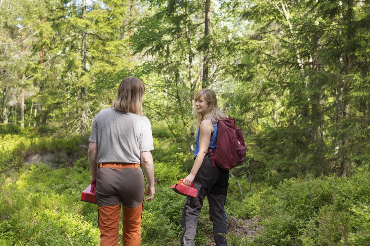 NÆRSKOG: Blåbærtur og andre turer i nærskogen er en opplevelse som er blitt nominert av flere, ifølge Norsk Friluftsliv. Foto: Paulina Cervenka