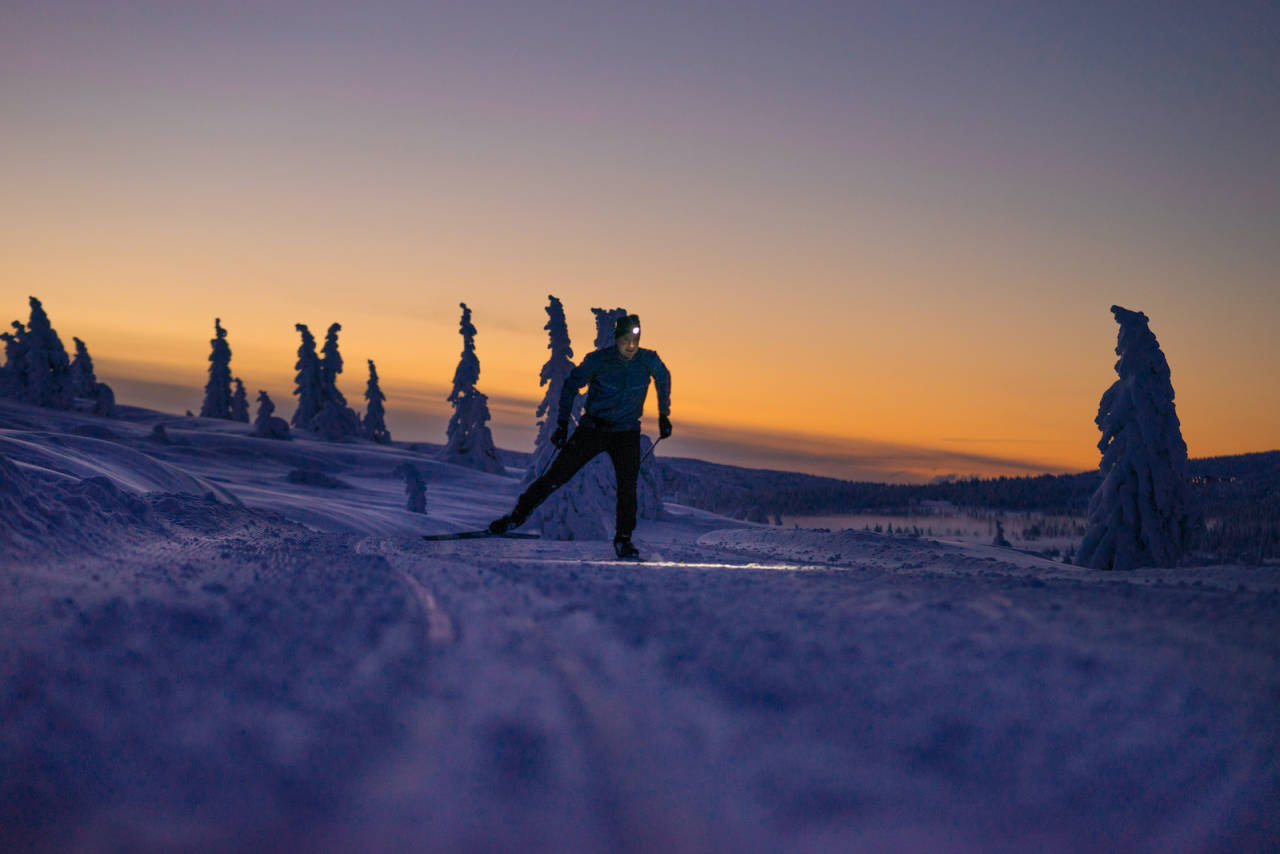 skøyteski skate nordic