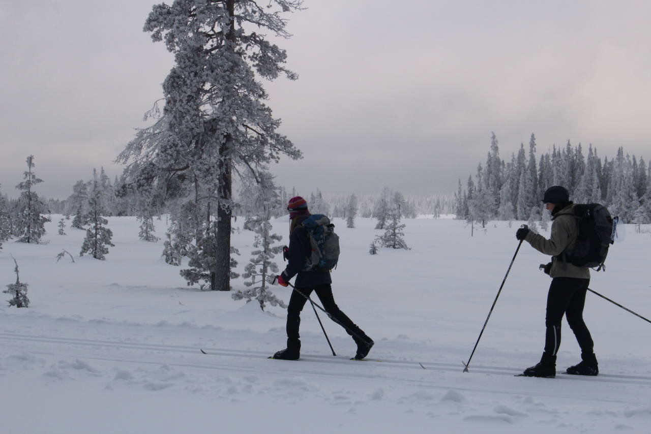 skitur på nordseter gropmarksrunden