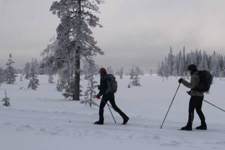 GROPMARKSRUNDEN: Det hender at det er surt og kaldt på fjellet. Da er det bedre å holde seg lavere i terrenget, og Gropmarksrunden kan være et fint alternativ.