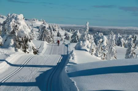 EKTE VINTER: Fra skaret mellom Mostefjell. Foto: Øyvind Wold