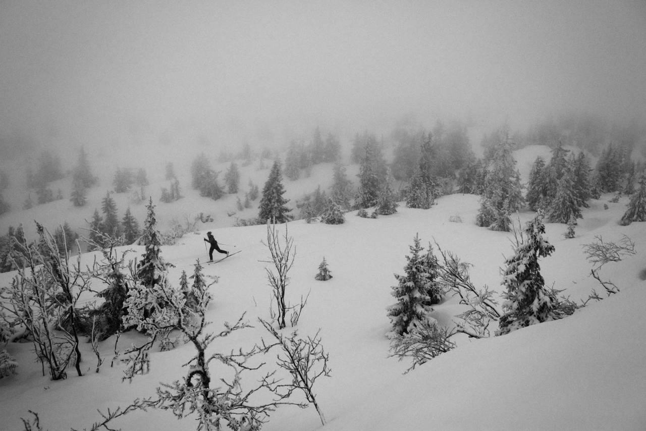 LETTKUPERT: Vikerfjell omtales som Oslos nærmeste høyfjell, og tilrettelegger langrennsspor når snøen har lagt seg. Foto Kristoffer H. Kippernes