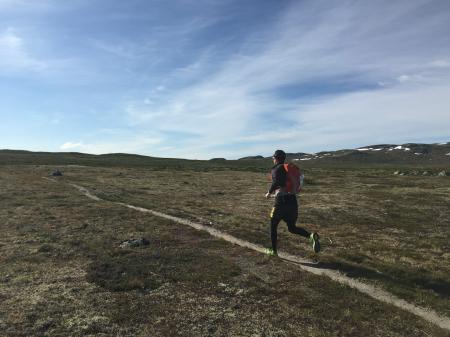 LØPETUR OVER VIDDA: Sondre Rønjom i fint driv. Foto: Bjørnar Eidsmo