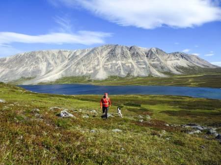 Bor I fjellmekka: Fjellet i bakgrunnen heter Vaddasgaisa (1028 moh) og ligger i Porsanger hvor Marit bor. Hun er på vei opp på Vuorji som er 1024 moh. i Stabbursdalen nasjonalpark. Foto: Privat