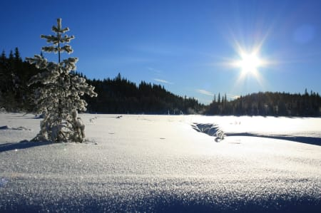 OSLO: Kjerkjeberget (også kalt Kirkeberget/Kyrkjeberget), Oslo fylke, på grensen mellom Oslo og Lunner kommune (631 moh). Kjerkjeberget er en ås som ligger i Nordmarka nord for vannet Store Sandungen og sør for åsene Branntjernhøgda og Revshammeren. På toppen ligger det en rød og hvit brannvakthytte som er synlig på langt hold og som gir god utsikt ned på Sandungen i sør og Sandungskalven i øst.