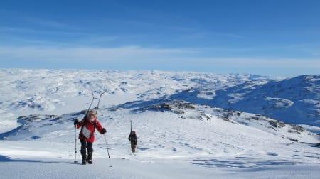 ROGALAND: Vassdalsegga (1658moh. – også kalt Vassdalseggi) ligger på grensen mellom Suldal i Rogaland og Vinje i Telemark. Turen til Vassdalsegga ble en kjempefin fjellskitur som startet fra Haukeliseter.  Toppen er svært tigjengelig siden hytta ligger langs E134. Turen var relativt enkel med litt bratte partier til tider og strakk seg vel over en 4-5 timer (tur/retur). Her fikk jeg nok en gang se et nydelig fjellområde jeg ikke var kjent med som har flust av flotte fjellskiturer. Skredfare var samtidig noe vi måtte ta hensyn til da en del sider her og der hadde løsnet den siste perioden på 2-3 uker. Jeg var tilbake i akkurat samme område i sommer og så at turen er nok vel så fantastisk på sommer som på vinter!