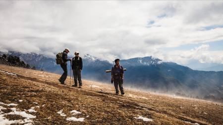 STÅR PÅ: Mulddyr er en krysning mellom hest og esel, og et svært pålitelig og populær arbeidskollega i Himalayas fjellområder.