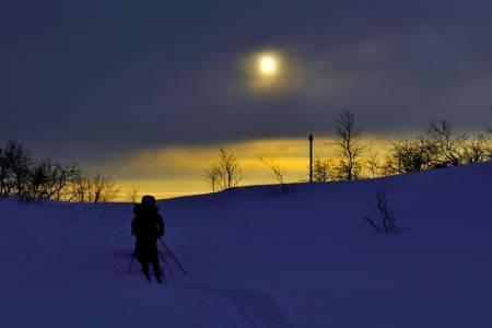Et glimt av februarsola. Foto: Ida Ask