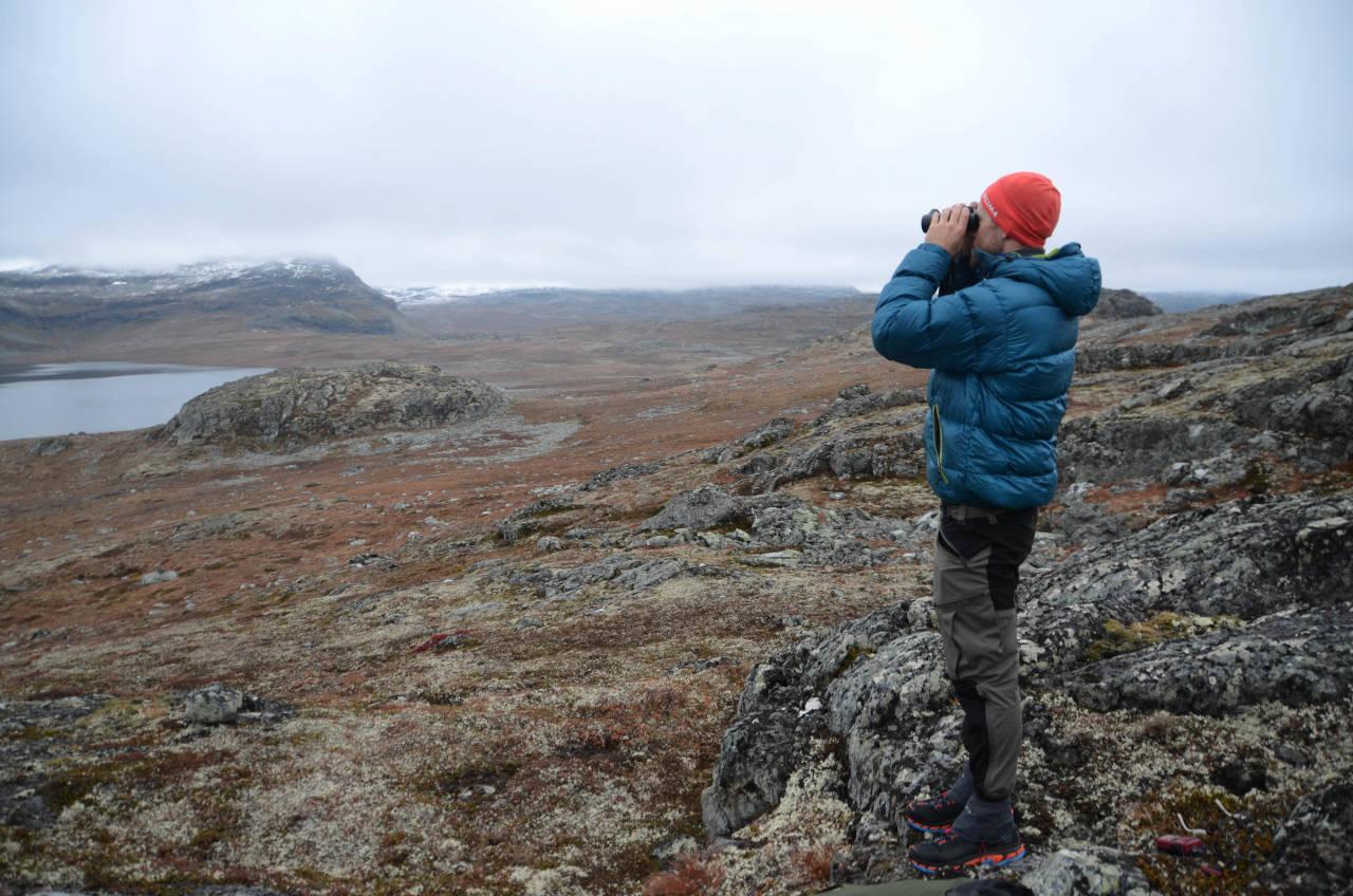 OPP OG SE: Klokka har såvidt passert sju om morgenen, og Helge Wangberg er oppom nærmeste høyde for å få et lite overblikk.