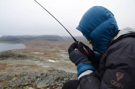 SAMBAND: Utover dagen begynner det å komme meldinger om hvor reinsdyra er observert– forhåpentligvis.