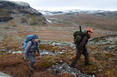FORFLYTNING: Utpå dagen velger vi å flytte på oss. Den store flokken er observert lengre øst, og vi akter å følge etter.