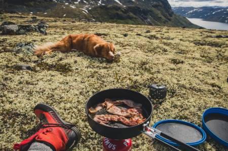 Eik ber til høgare makter om at han også skal få bacon til frukost. Foto: Line Hårklau