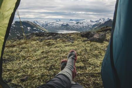 FINT LIV: Ei varm seng, eit godt måltid og fine folk (og dyr) på toppen av Høystakkane. Kva meir kan ein ynskje seg? Foto: Line Hårklau