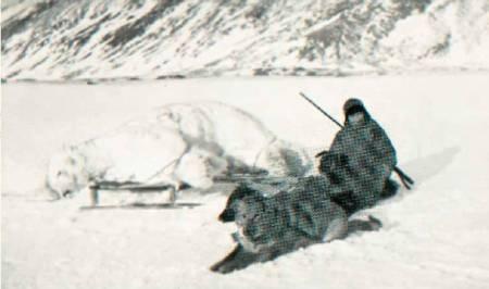ISBJØRNJEGER: Wanny snakker om bjørn, tenker på bjørn, drømmer om bjørn. Og skyter den. Foto: Svalbard Museum